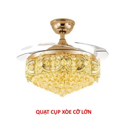 MFRi4_quat-cup-xoe-cx337.jpg